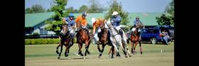 Aiken Farm Polo Club