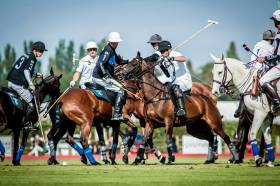 Polo is the hardest of Equestrian Sports